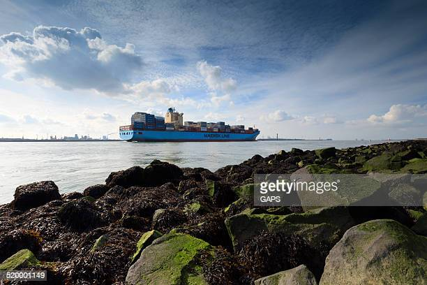 container ship maersk laguna leaving the port of rotterdam - maersk stock pictures, royalty-free photos & images