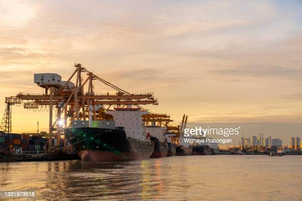 container ships and gantry cranes - newpremiumuk stock pictures, royalty-free photos & images