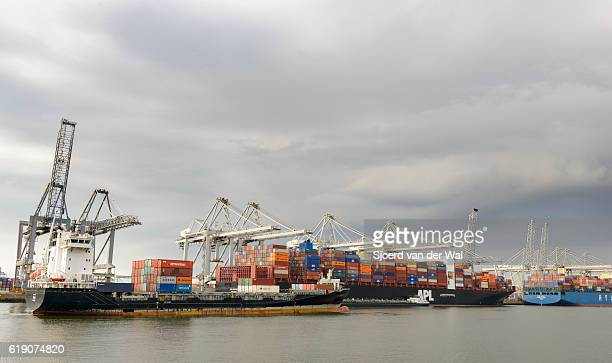 """container ships in port at a container terminal - """"sjoerd van der wal"""" photos et images de collection"""