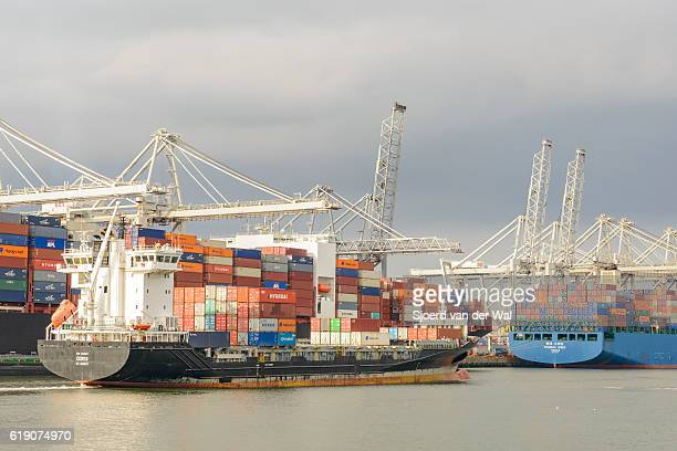 "container ships in port at a container terminal - ""sjoerd van der wal"" stock-fotos und bilder"