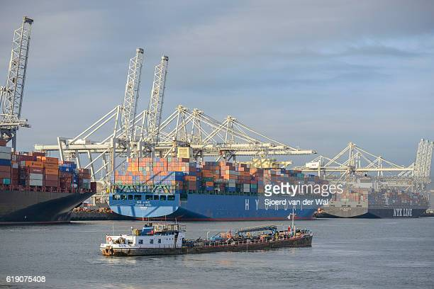 container ships in port at a container terminal - rotterdam stockfoto's en -beelden