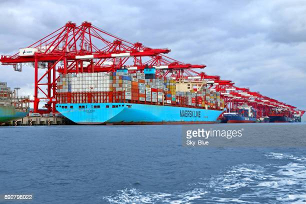 container ships in shanghai port - maersk stock pictures, royalty-free photos & images