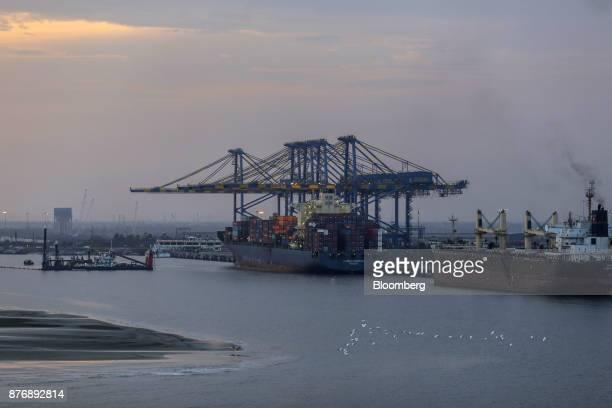Container ships sit docked next to gantry cranes at Krishnapatnam Port in Krishnapatnam Andhra Pradesh India on Monday Aug 11 2017 Growth in gross...