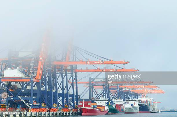 """container terminal - """"sjoerd van der wal"""" or """"sjo"""" stock pictures, royalty-free photos & images"""