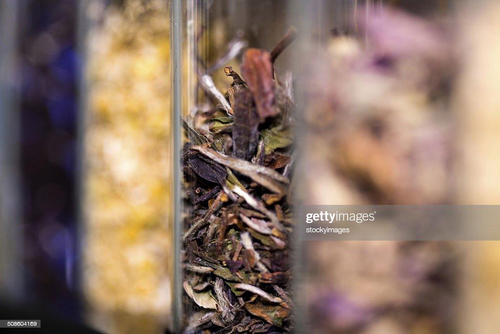 Recipiente com várias ervas aromáticas : Foto de stock