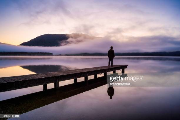 contemplation at lake kaniere - mirror lake stock pictures, royalty-free photos & images