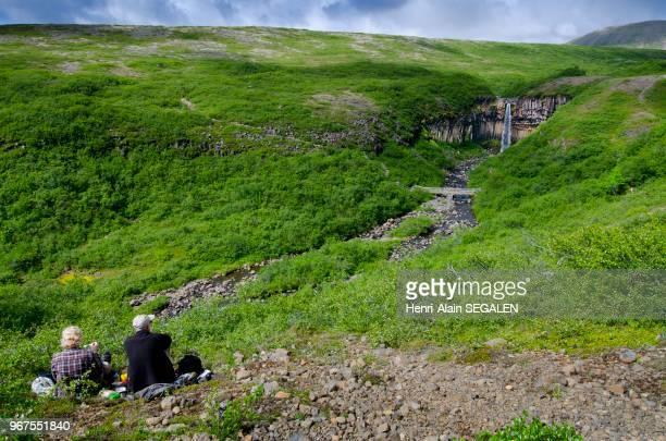 Contemplation de la cascade Svartifoss entourée de bouleaux, dans la région du Austurland en Islande.
