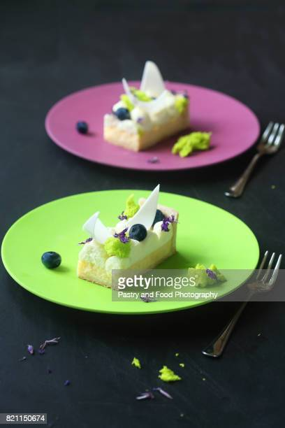 Contemporary Lemon Tart with Cream Cheese and Blueberries