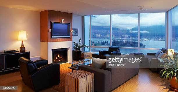 Contemporary living room with view of park and ocean