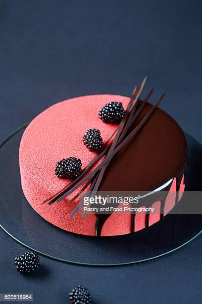 Contemporary Multi Layered Mousse Cake