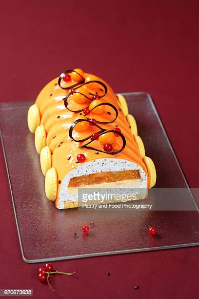 Contemporary Yule Log (layered) Cake
