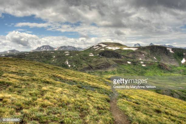 Continental Divide Trail above Timberline with Mountains