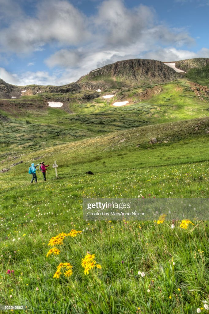Continental Divide Trail Junction in Mountains : Stock Photo