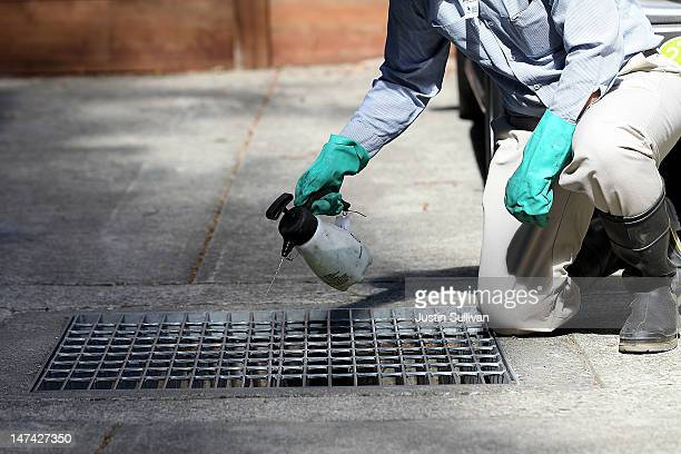 Contra Costa County Mosquito and Vector Control District technician David Wexler sprays BVA Larvacide Oil on standing water in a catch basin on June...