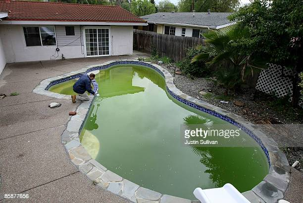 Contra Costa County Mosquito and Vector Control District technician Christopher Doll collects a water sample taken from a neglected pool at a...