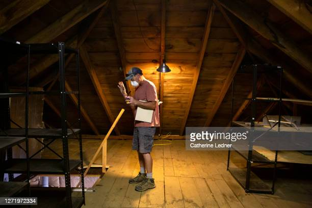 contractor with face mask gesturing while talking about an old attic - catherine ledner stock pictures, royalty-free photos & images