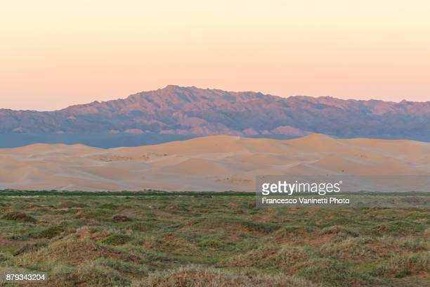 contrast between grass, sand dunes and mountains. gobi gurvan saikhan national park, sevrei district, south gobi province, mongolia. - omnogov stock pictures, royalty-free photos & images
