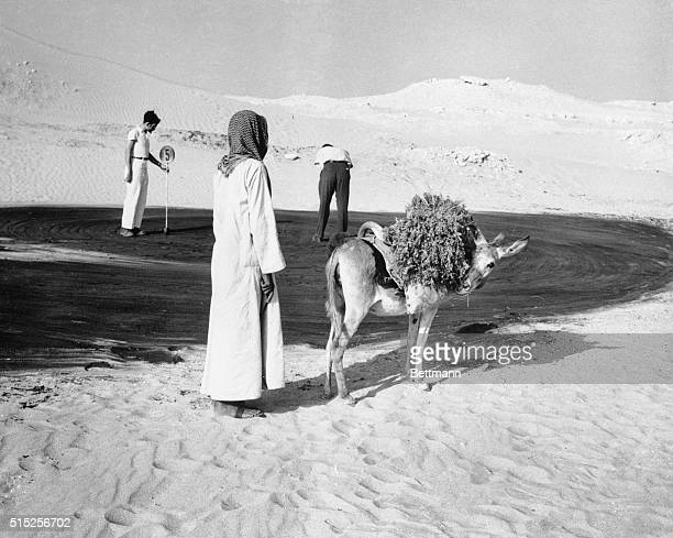 Contrast in Saudi Arabia Saudi Arabia A Saudi Arabian villager halts his alfalfaladen donkey to watch an American employee of the Arabian American...