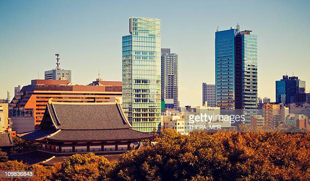 contrast on the city of tokyo - shrine stock pictures, royalty-free photos & images