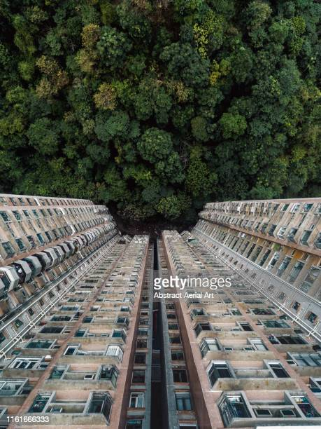 contrasting image between nature and a building complex shot with a drone, hong kong - urban sprawl stock pictures, royalty-free photos & images