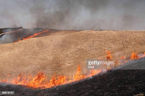 Controlled Burn of Mount Aso, Aso, Kumamoto, Japan