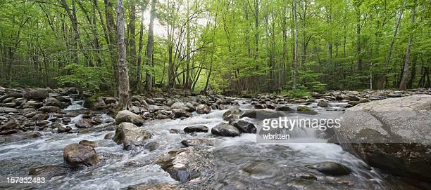 Converging Creeks Panorama