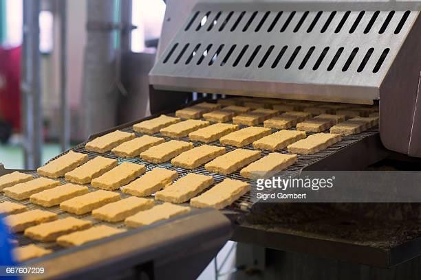conveyor belt with tofu in organic tofu production factory - sigrid gombert stock-fotos und bilder