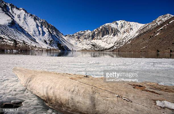 Convict lake with snow