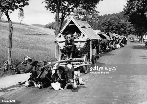 Convoi de paysans épuisés qui repartent en Allemagne dans des charettes sur des routes de montagne à Pilsen République Tchèque le 4 juin 1945