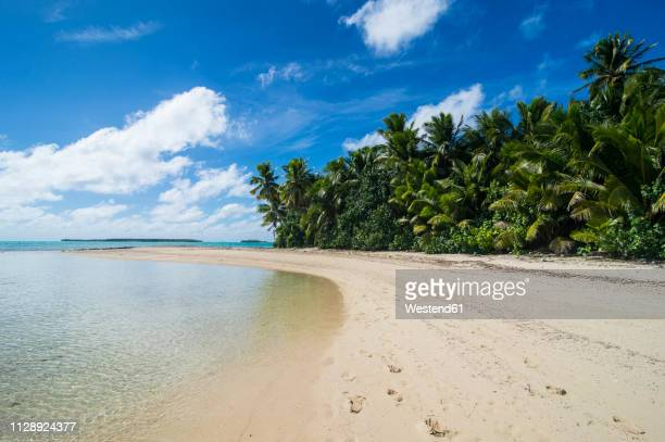 Cook Islands, Rarotonga, Aitutaki lagoon, white sand beach and palm beach