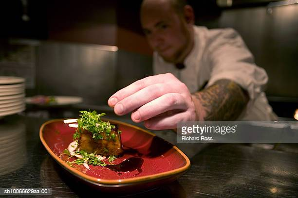 cook putting finishing touches on dish, close-up of hand - human limb stock pictures, royalty-free photos & images