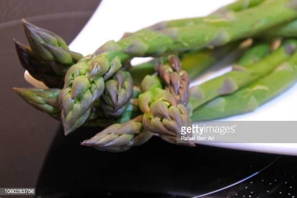 cooked asparagus served on a white plate - rafael ben ari - fotografias e filmes do acervo