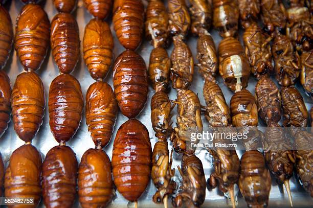 Cooked bugs for sale at Beijing Donghuamen night market, China