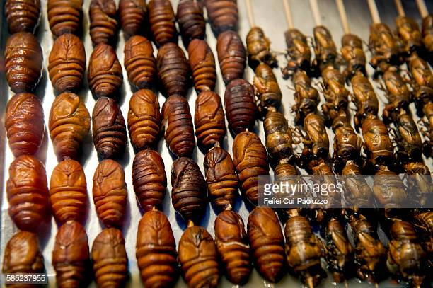 Cooked Bugs for sale at Wangfujing night market