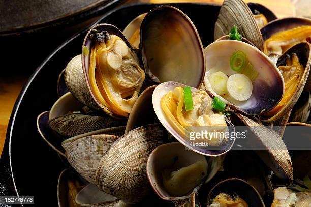 Frisch zubereitete Muschel