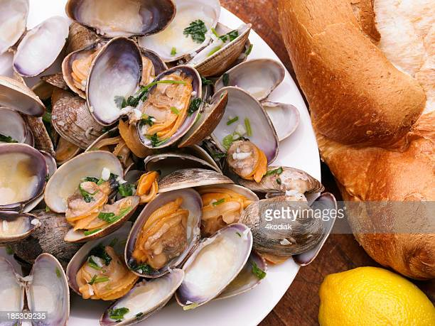 Cooked Clam