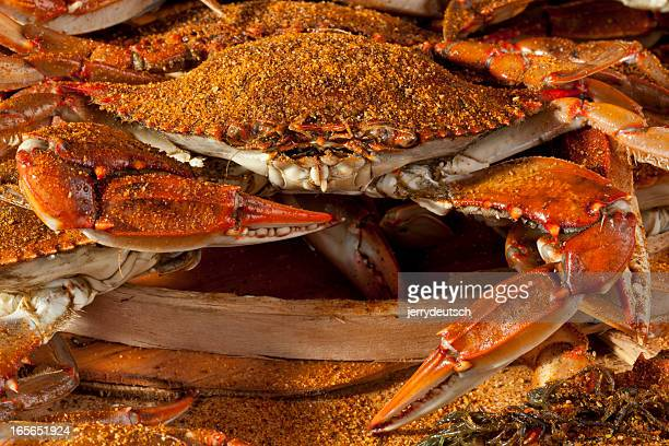 Cooked crabs and Old Bay spices