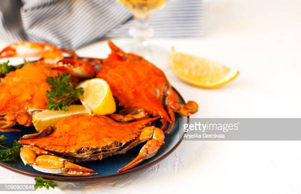 cooked crabs on black plate and glass of white wine - crab stock pictures, royalty-free photos & images
