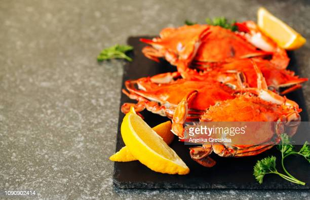 cooked crabs on black plate - crab stock pictures, royalty-free photos & images