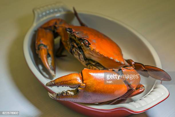 cooked delicious mud crab with huge claws - chilli crab stock photos and pictures