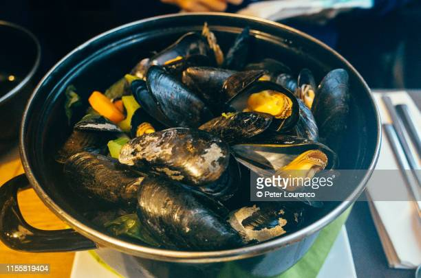 cooked mussels in belgium - peter lourenco stock pictures, royalty-free photos & images