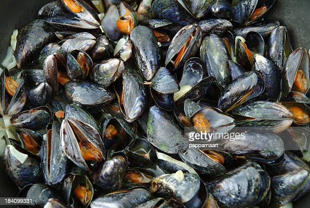 Cooked Mussels In Frying Pan