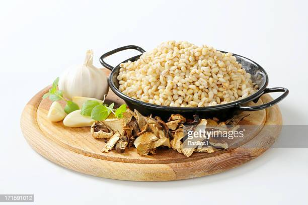 cooked peeled barley in a pot