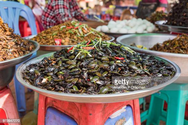 Cooked water beetles on sale at market stall, Skuon, Cambodia