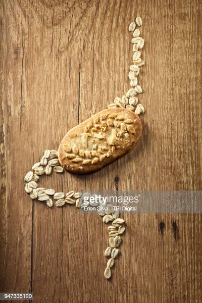 cookie and oatmeal suggesting a stomach design - intestine stock pictures, royalty-free photos & images