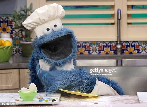 """Cookie Monster is seen on the set of """"Despierta America"""" at Univision Studios on August 19, 2016 in Miami, Florida."""
