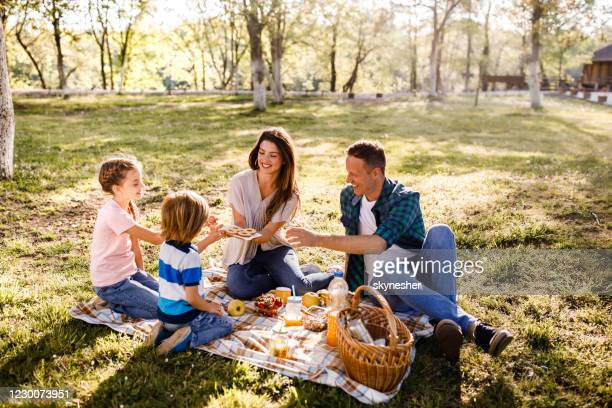 cookies on a picnic! - picnic stock pictures, royalty-free photos & images