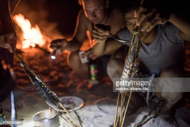 Cooking fish on a fire on the beach at night, Dawei Peninsula, Tanintharyi Region, Myanmar, Burma.