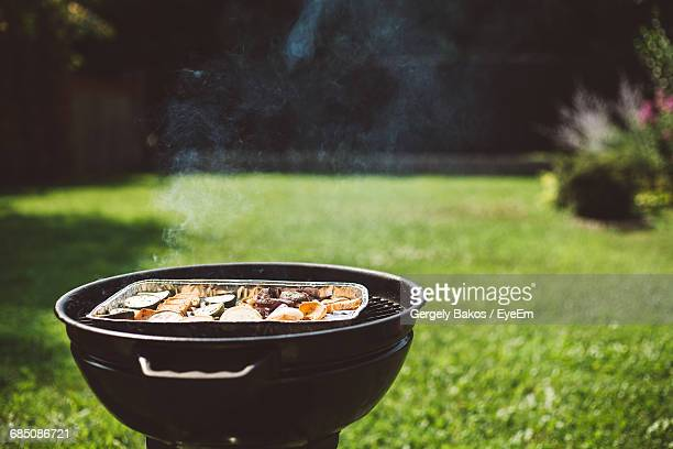 Cooking Food On Barbecue In Back Yard