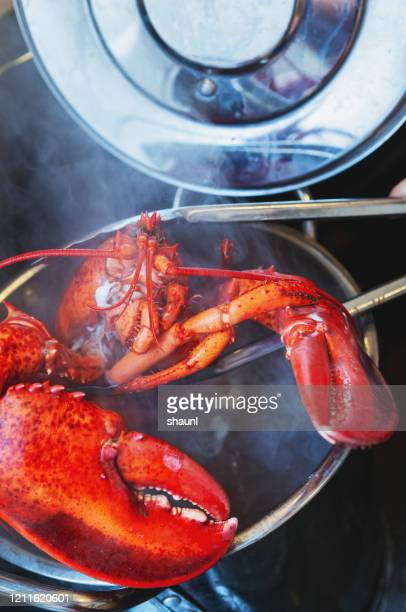 cooking lobster - boiled stock pictures, royalty-free photos & images